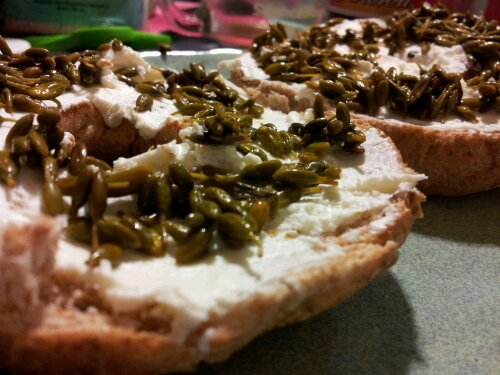pickled Scotch broom buds on a bagel with cream cheese